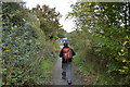 SX5452 : Walking National Cycle Route 2 by N Chadwick
