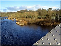 NZ1164 : River Tyne above Hagg Bank Bridge by Andrew Curtis