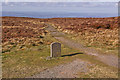 SO2536 : Offas Dyke Path stone by Ian Capper