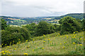 ST7765 : The northern side of Bathampton Down by Bill Boaden
