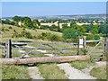 SP9615 : Ashridge Estate - Gate by Colin Smith