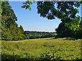 SP9614 : Ashridge - Clipper Down by Colin Smith