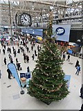 TQ3179 : Waterloo Station - Christmas Tree by Colin Smith