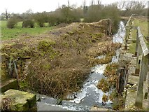 SK8336 : Lock 14, Grantham Canal by Alan Murray-Rust