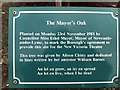 SJ8546 : Newcastle-under-Lyme: New Vic Theatre - information board about the Mayor's Oak by Jonathan Hutchins