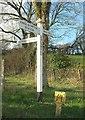 SS6724 : Signpost, Halswell Farm by Derek Harper