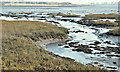 J5063 : Creek, Strangford Lough near Ardmillan (February 2017) by Albert Bridge