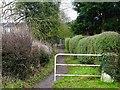 SK3339 : Bridleway to Allestree by Ian Calderwood