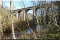 NT8742 : View through the trees to Twizel Viaduct by Russel Wills