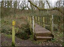ST6470 : Bridge to Bickley Farm by Neil Owen