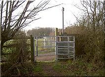 ST6470 : Across to Castle Inn Farm by Neil Owen