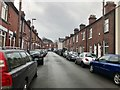 SJ8546 : Stoke-on-Trent: Langley Street, Basford by Jonathan Hutchins