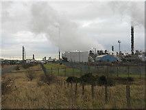 NT1890 : Mossmorran Chemical Plant by M J Richardson