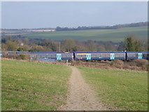 TQ5365 : Southeastern train as seen from The Darent Valley Path by Marathon