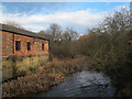 SE3231 : Thwaite Mills: tailrace and workshop by Stephen Craven