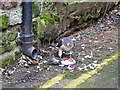 NY4055 : Sparrowhawk eating a pigeon by Rose and Trev Clough