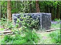 TQ8020 : Old water tank in Brede High Woods by Patrick Roper