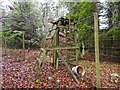 NH6167 : Deer Fence on Cat Hill by valenta