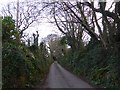 SX9271 : Derestriction signs in Short Lane, Ringmore by David Smith