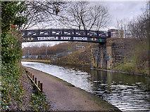 SJ8196 : Bridgewater Canal, Throstle Nest Bridge by David Dixon