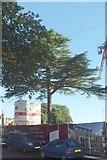 SX9364 : Building site, Wellswood by Derek Harper