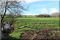 NS3727 : Farmland beside the Pow Burn by Billy McCrorie