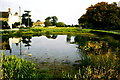 SO7407 : Village Pond, The Green, Frampton on Severn, Gloucestershire 1996 by Ray Bird