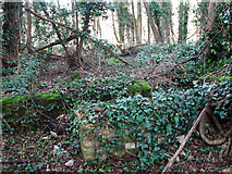 TG2004 : View across an old hut foundation by Evelyn Simak