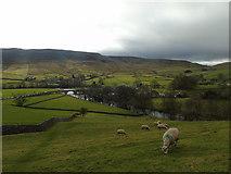 SE0361 : Barden Moor by Carroll Pierce