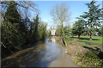 SP3165 : Kayakers on the River Leam by DS Pugh