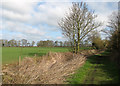 TL4562 : A long field by Mere Way by John Sutton