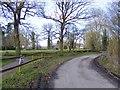SJ8001 : Rushey Lane by Gordon Griffiths