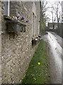 ST7675 : Spring in a windowbox by Neil Owen