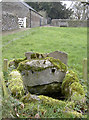 ST7675 : A small and mossy spring by Neil Owen