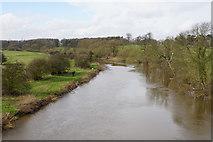 SE4843 : The River Wharfe by Bill Boaden