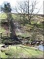 SE7290 : Path on the north side of Lastingham by Gordon Hatton