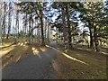 NH9014 : The Speyside Way by valenta