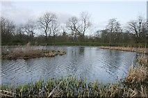 NS6168 : Boating pond, Springburn Park by Richard Sutcliffe