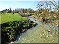 SP2447 : River Stour at Crimscote by Philip Halling