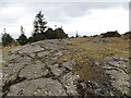 J3630 : Exposed Silurian rocks on the summit of Drinnahilly by Eric Jones