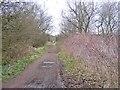 SO8792 : Railway Path Scene by Gordon Griffiths