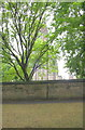 SE2733 : St Bartholomew's Church viewed over wall of Strawberry Lane by Roger Templeman