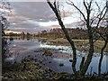 NH9419 : Milton Loch by valenta