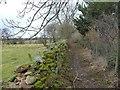 NY6825 : Public footpath heading north-west towards Knock by Christine Johnstone