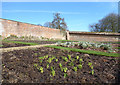 ST7734 : Signs of Life in the Walled Garden by Des Blenkinsopp