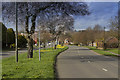 SK3334 : Spring in Manor Road by Malcolm Neal