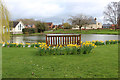SE4766 : Village Green and Duckpond, Tholthorpe by Chris Heaton