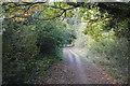 TL5053 : E2 long distance path by N Chadwick
