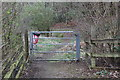 SO1607 : Footpath into nature reserve, Belle Vue, Garden City, Ebbw Vale by M J Roscoe