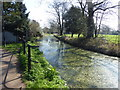 TQ3297 : The New River in Enfield by Marathon